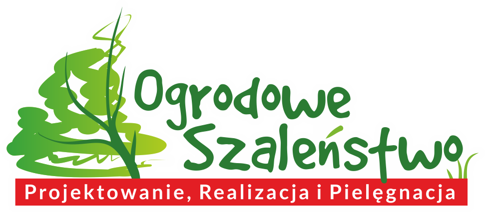 logo_png1